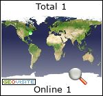 analisi dell'audience Internet